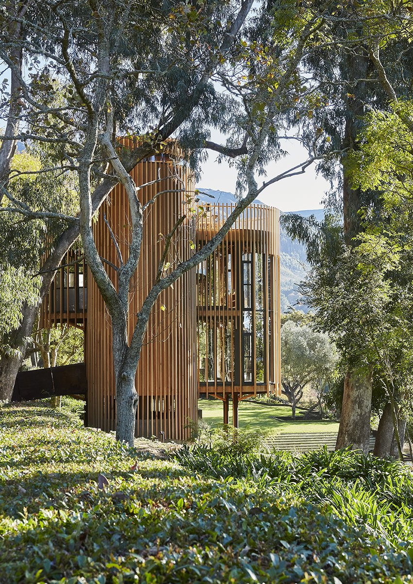 Outdoor, Front Yard, Trees, Shrubs, Grass, and Gardens Lofted amid eucalyptus and oak trees, Graham Paarman's house is a glassed-in, steel-frame structure with a veil of vertical slats. Excluding outdoor areas, it measures about 720 square feet.  Photo 2 of 9 in A Floating South African Cabin Borrows From the Landscape