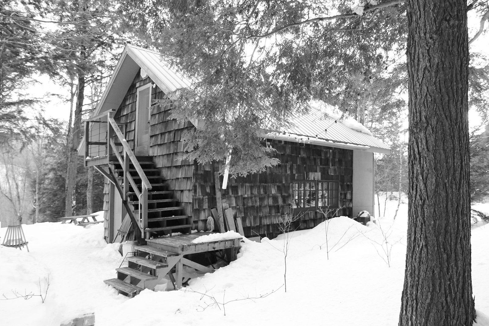 By building upward and outward, YH2 Architecture added to a former lumberman's shed without harming the nearby trees.  Photo 2 of 11 in Growing Upward and Outward, a Cabin Expansion Mirrors the Trees