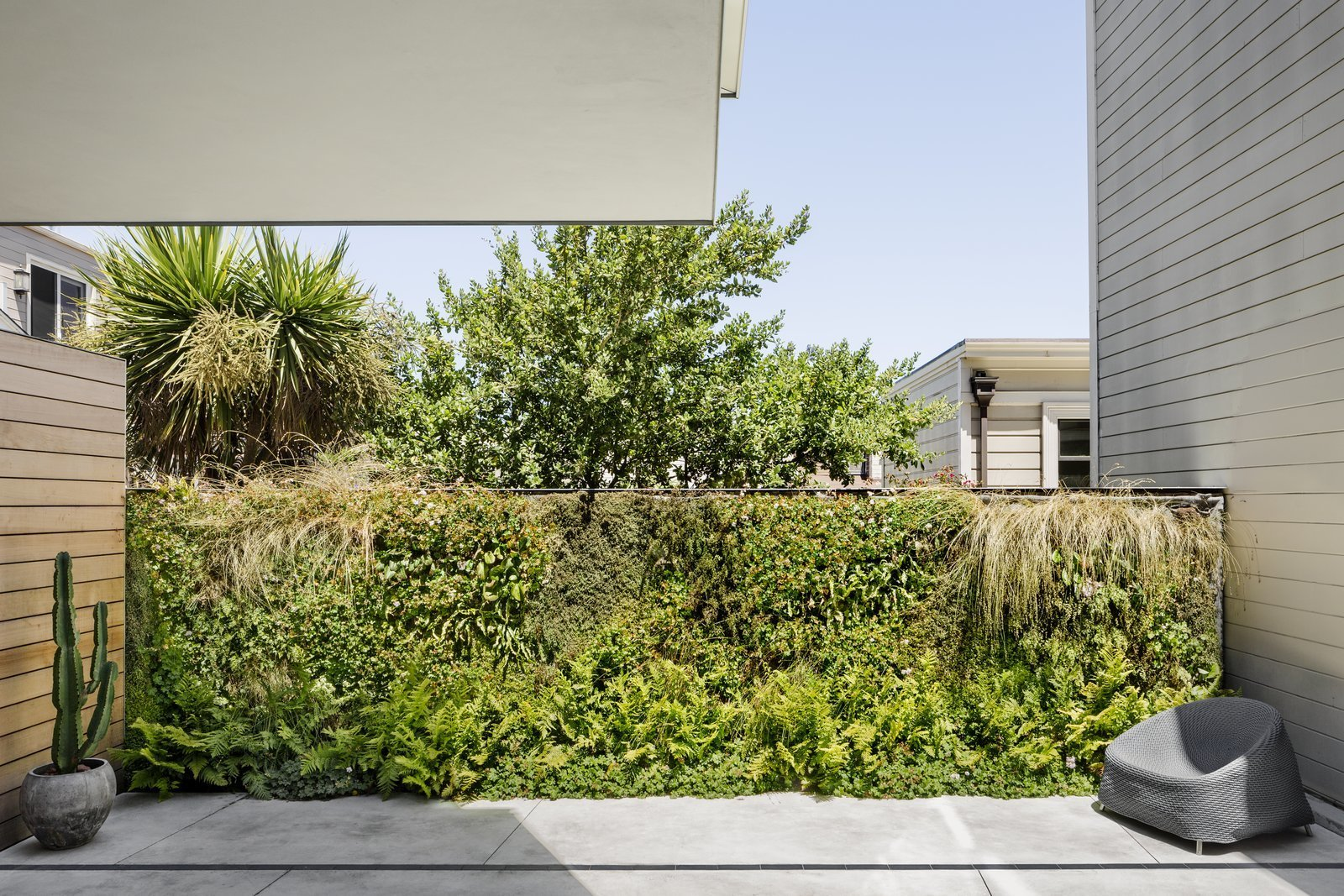 After: Alamo Square Residence backyard with a living wall landscape feature with wall hanging plants