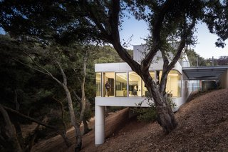 Two trunk-like columns support an aluminum-and-zinc-clad home in the foothills of the Santa Cruz Mountains designed by architect Craig Steely. With an intention to disrupt  as few oak trees on the dense site as possible, Steely built the glass-walled house to  nestle against the steep hillside. Visitors access the entrance from above, descending to the living spaces via a native grass-covered roof. - Cupertino, California Dwell Magazine : September / October 2017