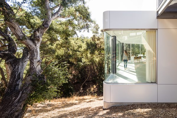The main living area is cantilevered into the tree canopy, while bedrooms, bathrooms, service, and storage are located behind a long wall of cabinetry against the hillside. - Cupertino, California Dwell Magazine : September / October 2017