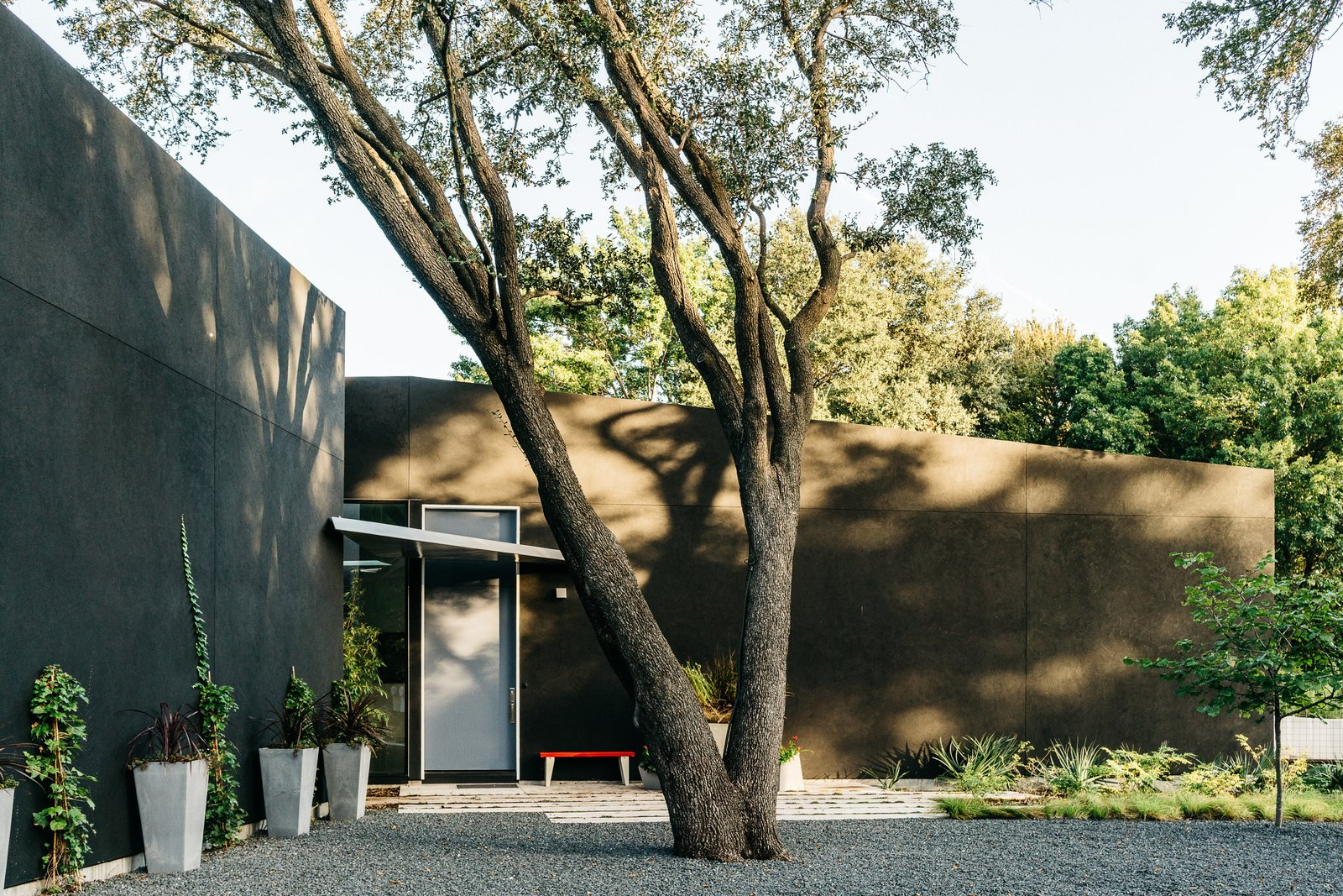 A Black Stucco Home in Dallas Is Surrounded by Eye-Popping Greenery & A Black Stucco Home in Dallas Is Surrounded by Eye-Popping Greenery ...