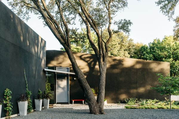 A Black Stucco Home in Dallas Is Surrounded by Eye-Popping Greenery