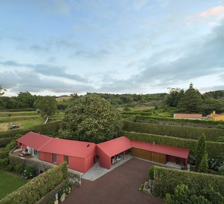 A Bright Red Island Residence Embraces a Linden Tree