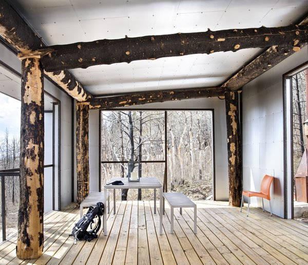 Standing, dead charred timber became the post-and-beam structure, connecting the project with the forest and creating a lasting reminder of its storied past.