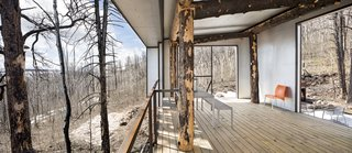 The Phoenix is what owner and architect Eric Logan describes as a cool little folly in the woods.