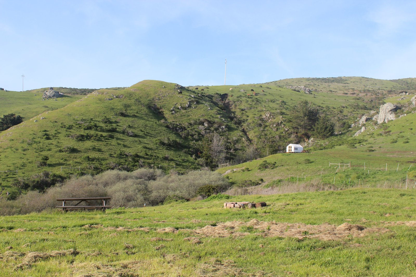 Outdoor, Shrubs, Trees, Grass, and Slope Chanslor Ranch offers drive-in and walk-in campsites, glamping tents, and tipis.  Photo 4 of 17 in Bodega Bay or Bust: Taking the Airstream Globetrotter to Northern California's Coastal Gem