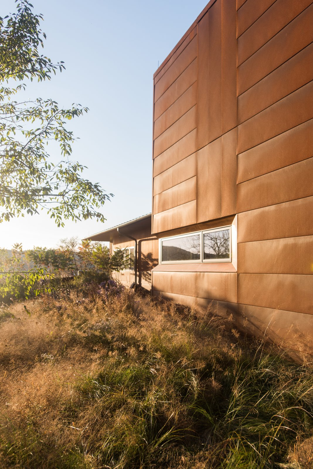 """Exterior, Metal Siding Material, and House Building Type Landscape architect Jamie Purinton blanketed Debbie Cooper and Dan Sternberg's Hudson Valley property with native species. Among them are purple love grass and prairie dropseeds, which grow by the Cor-Ten garage. """"Both have wonderfully airy flowers and fall colors that connect well to steel,"""" says Purinton.  Photo 1 of 4 in Native Plants Form a Meadow-Like Habitat for a Rustic New York Home"""