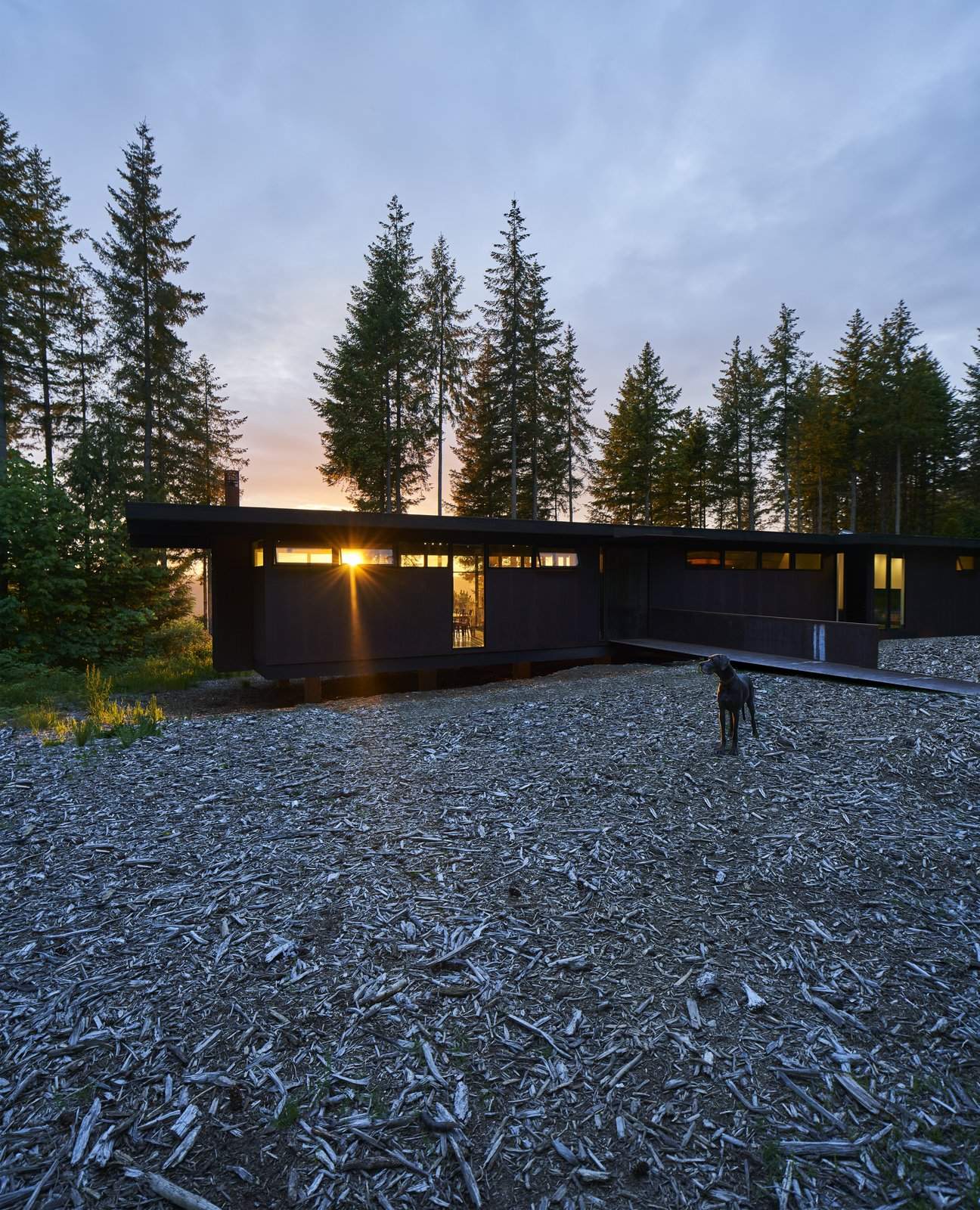 Exterior, Flat RoofLine, Metal Siding Material, and House Building Type In Carnation, Washington, Kim and Lou Maxon and their three boys reside in a horizontal, steel-clad house designed by the renowned firm Olson Kundig. Its south end is slightly raised above the bare landscape, accessible via a bridge.   Photo 1 of 18 in A Seattle-Area Family Breaks Free From Suburbia and Ventures Deep Into Nature