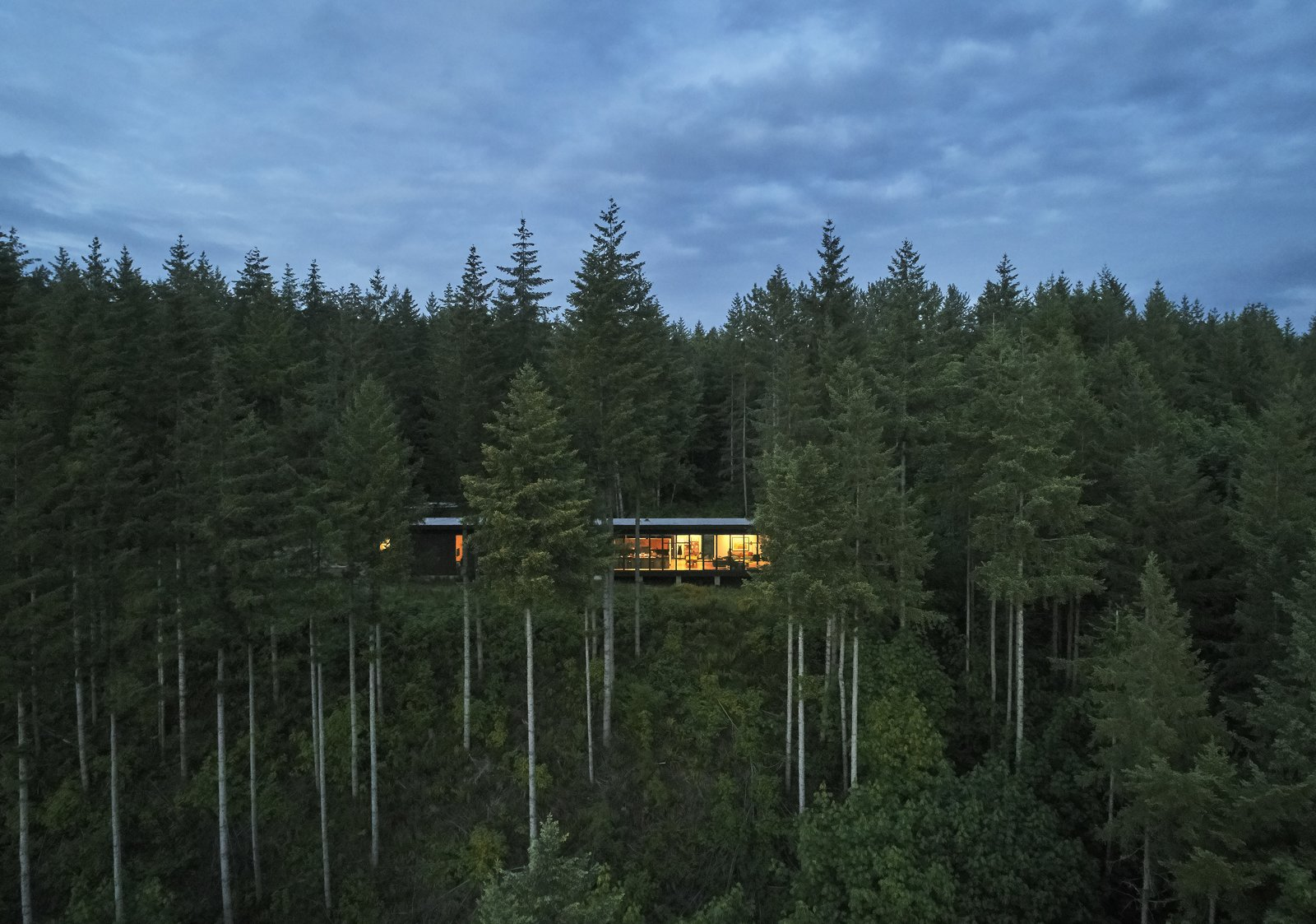 """Outdoor, Woodland, and Trees Set on 21 acres at the top of the Snoqualmie Valley, the 3,200-square-foot Maxon House represents a major lifestyle change for the Maxons, who previously lived in a split-level in a planned subdivision. """"When you're here, you just sit and watch what's happening outside,"""" says Lou. """"It's like the Weather Channel. We don't even need the TV."""" Kim adds, """"In spring everything explodes."""" Cedars, hemlocks, and vine maples shoot up from the fern-covered hillside.  Photo 4 of 5 in Construction Diary: Olson Kundig Builds a Detachable Studio-on-Rails Near Seattle from A Seattle-Area Family Breaks Free From Suburbia and Ventures Deep Into Nature"""
