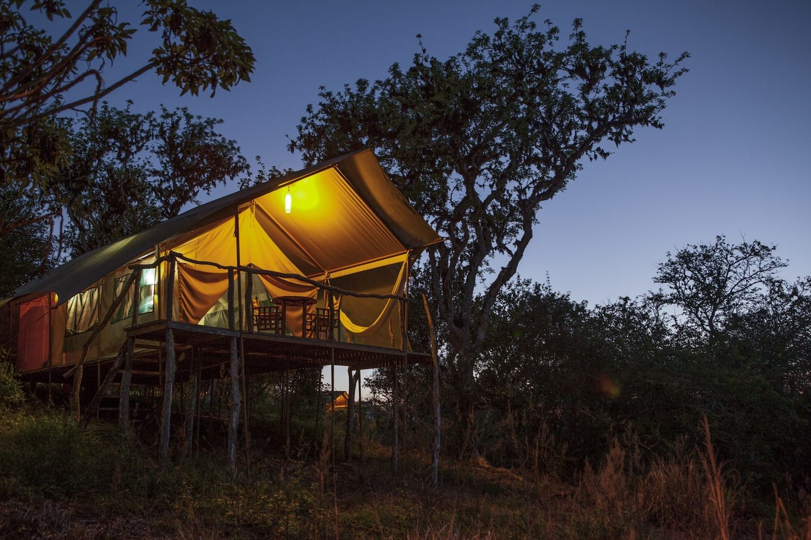 Exterior and Tent Building Type Galapagos Safari Camp on Galapagos Islands, Ecuador  Photo 9 of 12 in 12 Epic Hotels That Take Glamping to the Next Level from Galapagos Safari Camp