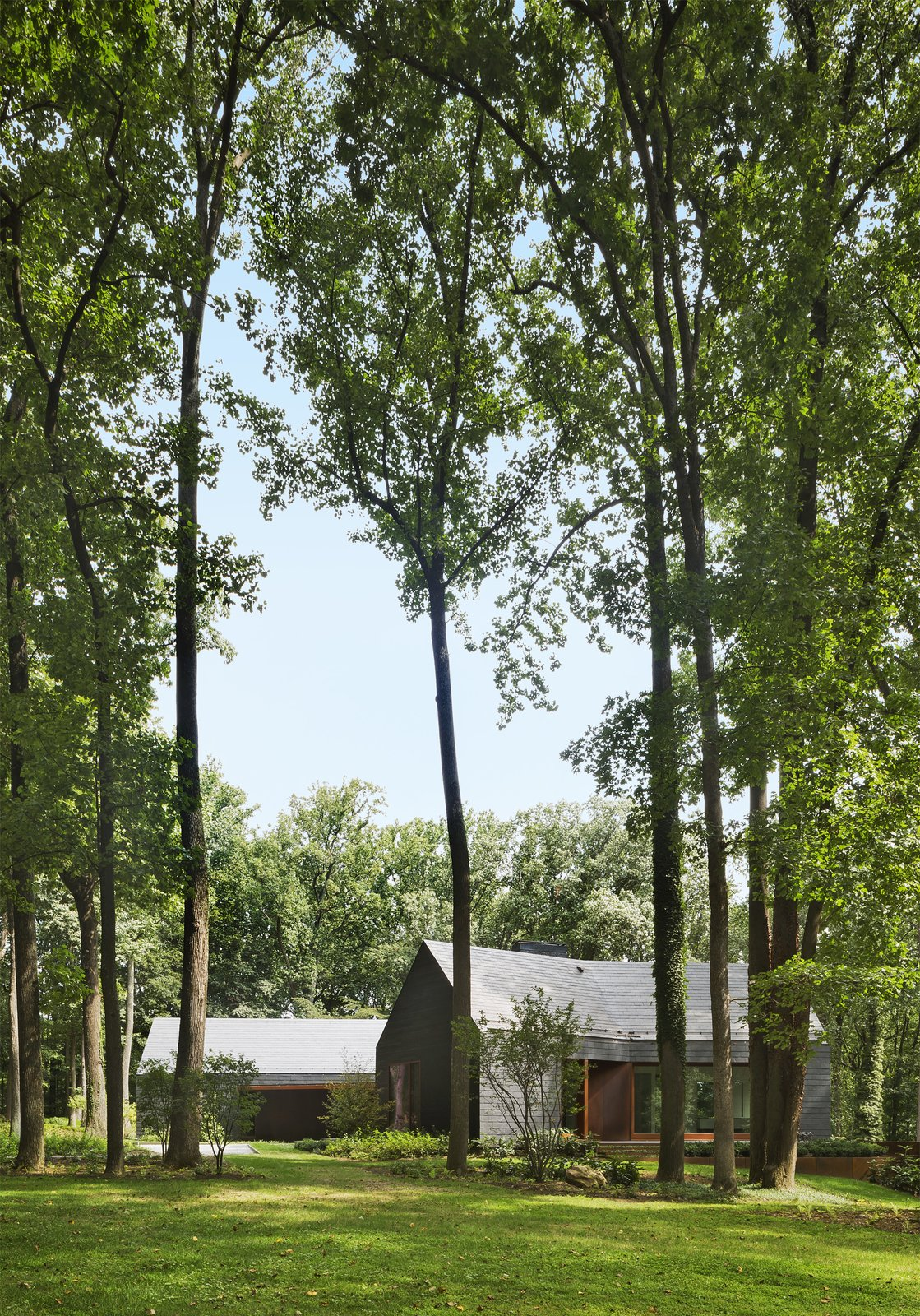 Outdoor, Woodland, Trees, Grass, and Side Yard The house sits on a wooded three-acre site encircled by state-owned land.  Photo 5 of 14 in After a Fire, a Maryland Couple Turn to Charred Wood to Rebuild Their House