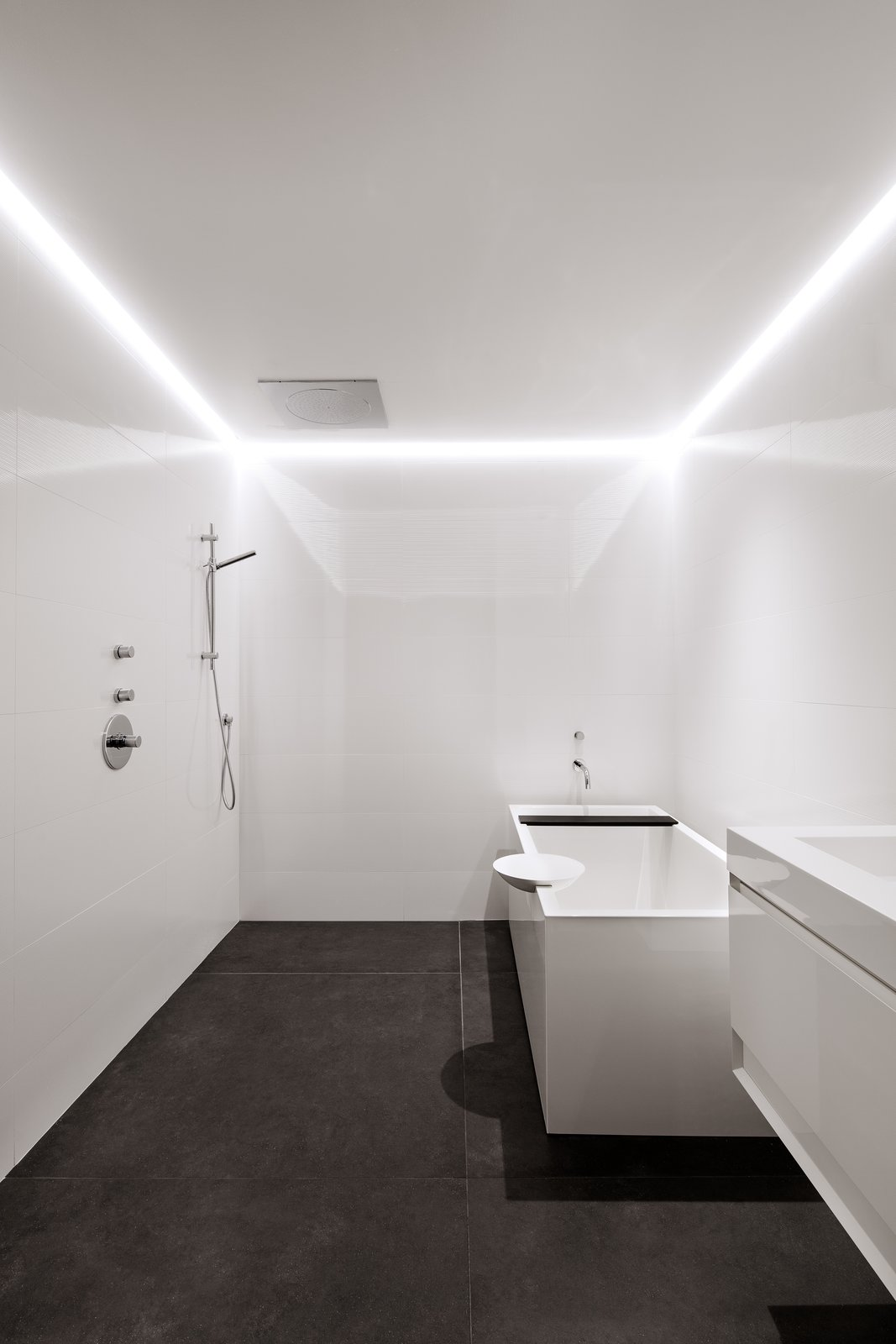 Bath, Drop In, Open, Accent, and Drop In The guest bath, located in the lower level of the house, has a tub by Wetstyle. LED lights are recessed in a channel along the drywall ceiling.  Best Bath Open Accent Photos from After a Fire, a Maryland Couple Turn to Charred Wood to Rebuild Their House
