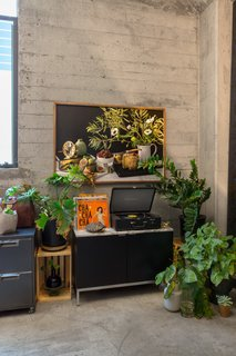 A vibrant corner flourishes with plants and music.