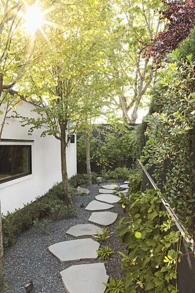 "Katsura trees, climbing hydrangeas, and basalt stepping stones create a pleasing passageway between the lower back deck and the new garage. ""What could have been leftover space, I wanted to be a promenade,"" says Andrea."