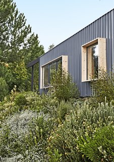Boxy spruce-framed windows punctuate the 1,615-square-foot structure, which is clad in corrugated metal.