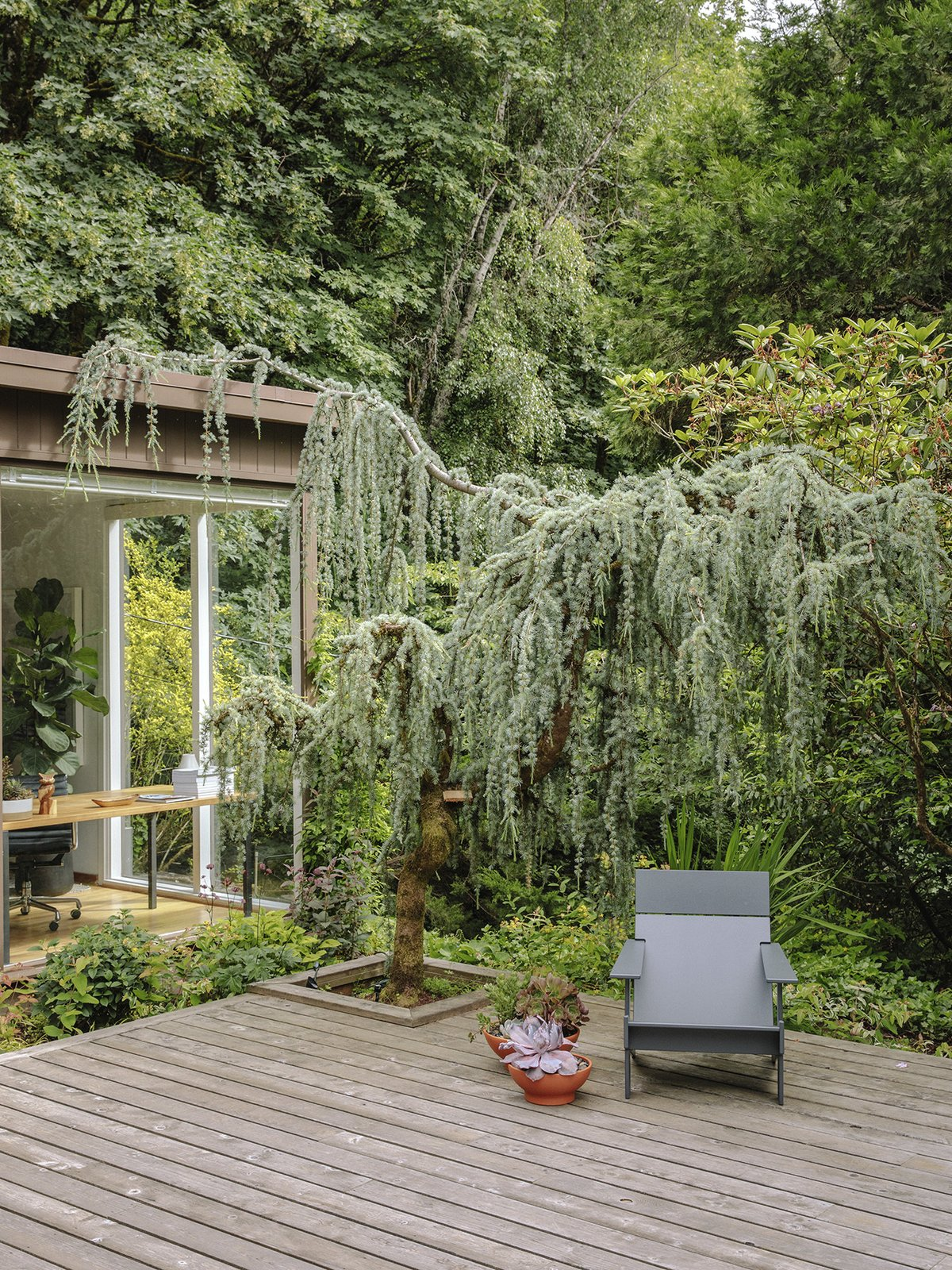 Outdoor, Back Yard, Trees, and Wood Patio, Porch, Deck A Lollygagger lounge chair by Loll Designs sits on the back deck.  Best Photos from This House in Oregon Has a Long, Strange History of Being Called a Frank Lloyd Wright