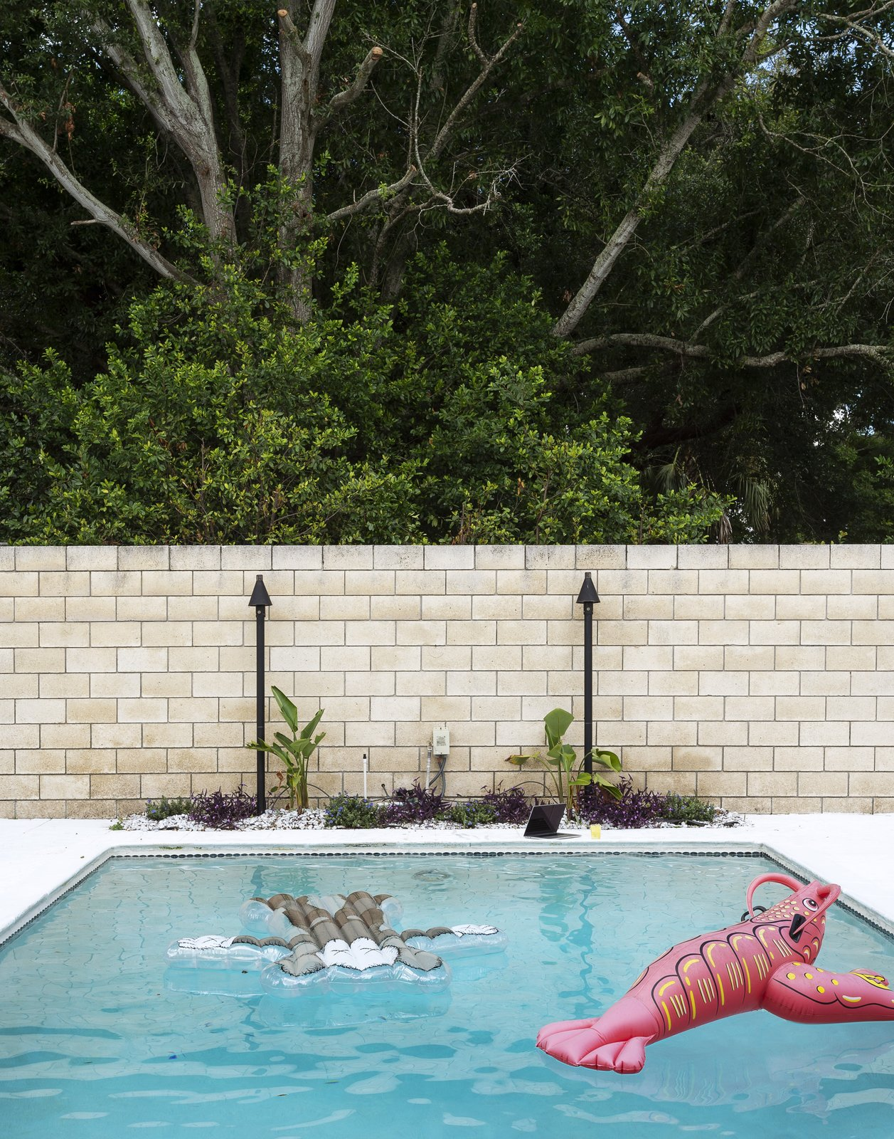 Outdoor, Back Yard, and Swimming Pools, Tubs, Shower A Jeff Koons lobster joins a float by the artist KAWS in the pool.  The Ellison House from Pop Art, Street Art, and Space-Age Furniture Collide at a Painter's Midcentury Ranch Home in Florida