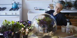 At Her Hudson Valley Studio,  Paula Hayes Explores the Intersection of Art and Nature