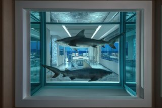 Guests encounter Winner/Loser (2018), two bull sharks preserved in formaldehyde, upon entering the suite.