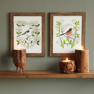 Show your state pride and celebrate the flora and fauna of home with framed artwork by Anna Branning and Mara Murphy.