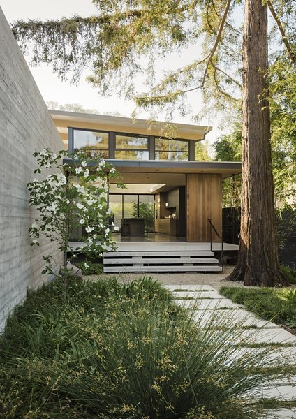 "Recently retired and ready to downsize, Paul and Melonie Brophy found a lot in Palo Alto that gave them the chance to start fresh. Their glass, concrete, and wood house, designed by Feldman Architecture, seems to float above a landscape by Bernard Trainor. Of the board-formed concrete wall, architect Taisuke Ikegami says, ""It connects the building to the ground plane while allowing the house to be a landscape element."""