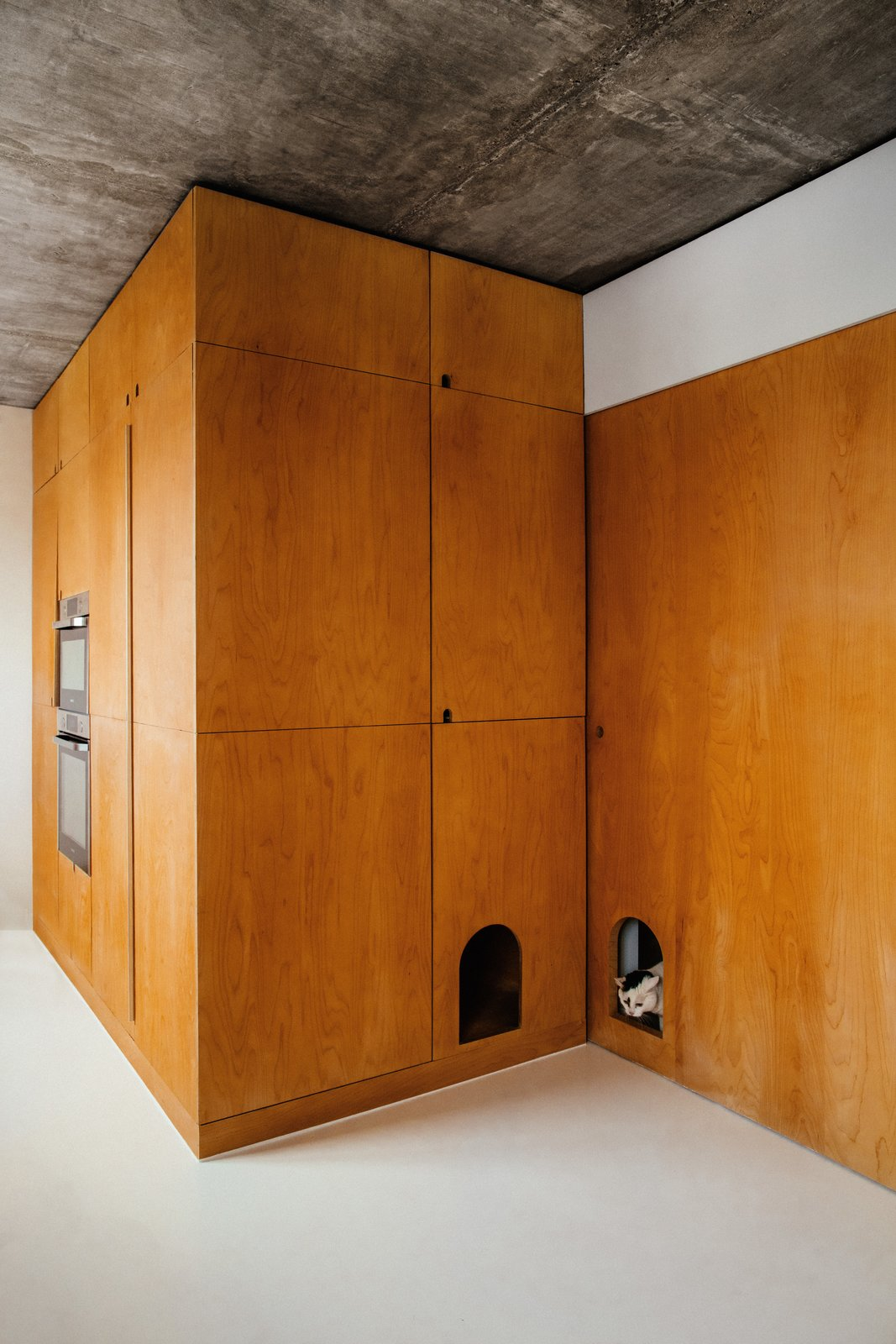 Doors, Sliding Door Type, Interior, and Wood The sliding wall on the upper floor has a miniature doorway for Sacha the cat; the second opening contains his litter box.  Photos from This Live/Work Duplex in Paris Is Full of Kid- and Cat-Friendly Details