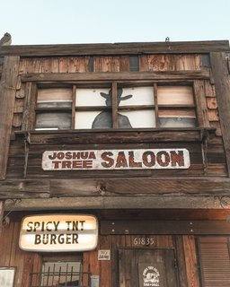 Best place in town to grab a drink, play some pool, and get a veggie burger!