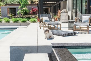 Laylo dog beds feature interchangeable covers that have a durable, non-skid bottom, allowing pups to take a mid-day nap or sunbathe by the pool.