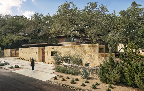 The Olmos Park Residence sits in an established neighborhood in San Antonio. Heavy limestone walls screen neighbors on both sides, while the fourth side opens up to a verdant flood basin.