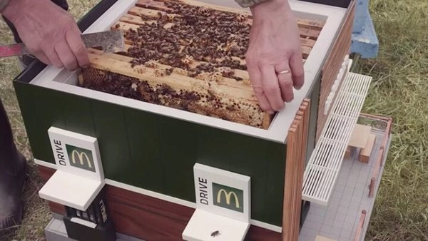 The McHive is a fully functioning beehive with enough room for thousands of bees to work their magic.