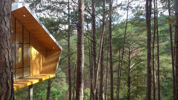 The angular cabins overlook breathtaking forest vistas.