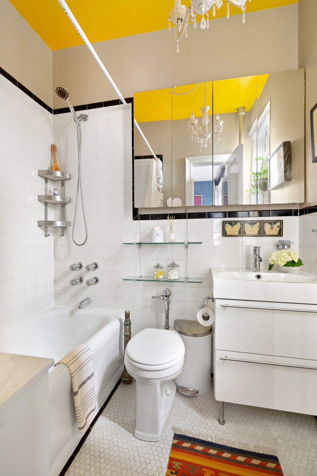 Brooklyn Prospect Heights micro flat bathroom