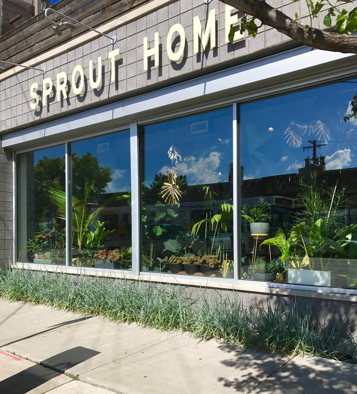 Sprout Home Kitchen and Table  Photo 5 of 7 in Top Design Cities 2019: Chicago
