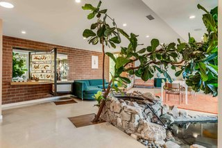 A fiddle leaf fig tree grows alongside a Koi pond in the middle of the living and dining room. The exposed brick wall contrasts with the neutral-colored cork flooring.