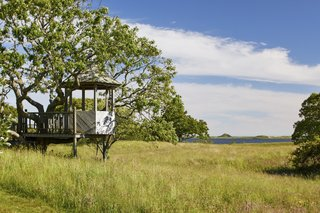 """A small treehouse overlooks grassy fields and&nbsp;<span style=""""font-family: Theinhardt, -apple-system, BlinkMacSystemFont, &quot;Segoe UI&quot;, Roboto, Oxygen-Sans, Ubuntu, Cantarell, &quot;Helvetica Neue&quot;, sans-serif;"""">Squibnocket pond in the background</span><span style=""""font-family: Theinhardt, -apple-system, BlinkMacSystemFont, &quot;Segoe UI&quot;, Roboto, Oxygen-Sans, Ubuntu, Cantarell, &quot;Helvetica Neue&quot;, sans-serif;"""">. Jackie O reportedly had the structure built for her grandchildren when they were younger.</span>"""