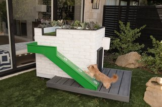 "A pup uses the turf ramp to access the ""woof deck"" for outdoor lounging with a view."