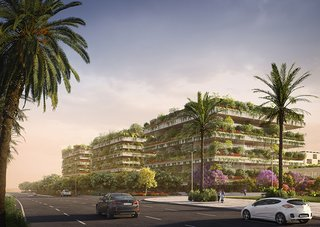 The  living facades will host biodiversity specific to the North African region.
