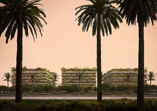 Africa's first Vertical Forests could pave new ground for an era of sustainability in Cairo—and the rest of the world.