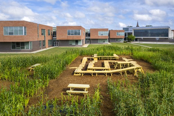 MASS Design Group cultivated a cornfield on the grounds of Central Middle School to foster conversation about food production and consumption.