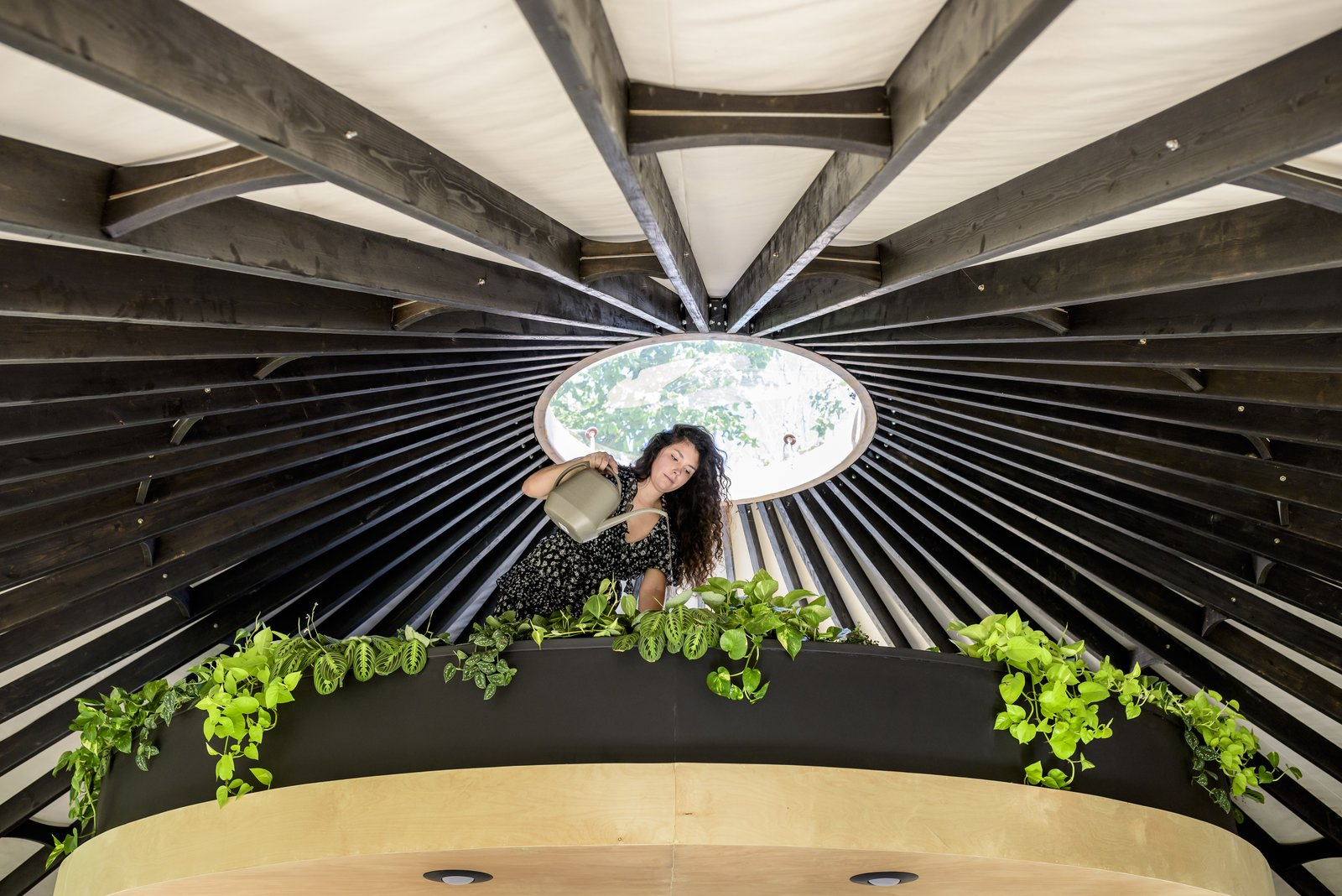 Living Plants adorn the edge of the lofted bedroom.  Best Living Photos from Construction Diary: A Young Couple DIY a Lofted Yurt in Portland
