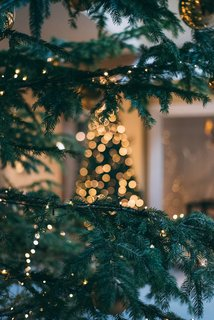 Why I'm Skipping the Christmas Tree This Year