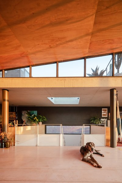 """""""The large roof purposely brings the sunset inside—without any control. The wood reflects the warmth of the reddish light, coloring the entire home. Every day, it's a new painting, a different nuance,"""" says Tito."""