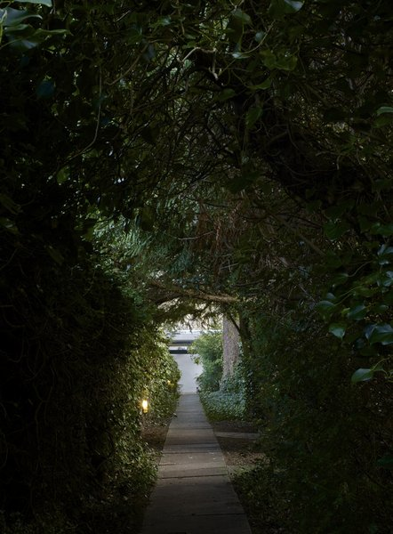A look at the walkway that connects the secluded home with a designated carpark along the street. Mature hedges and a canopy of trees create a picturesque setting.