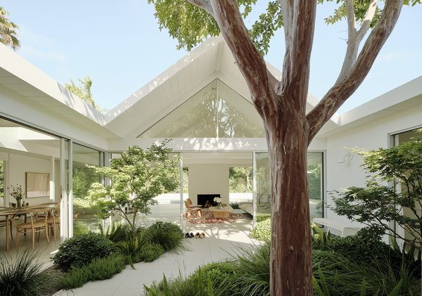 A pathway winds between a pair of Japanese maples and a myrtle tree that dates to the home's original construction. The floor-to-ceiling windows and sliders are by Fleetwood.