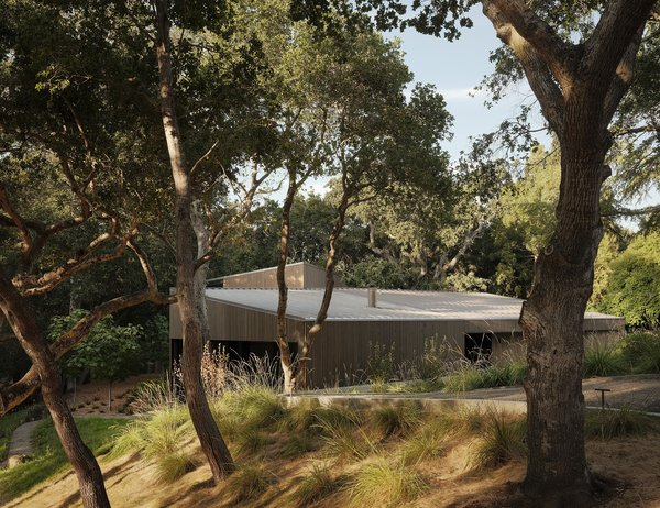 On a lot studded with old-growth oaks and redwoods and crossed by a creek, Ian and Krista Johnson asked Field Architecture to design a house that would defer to its natural surroundings.