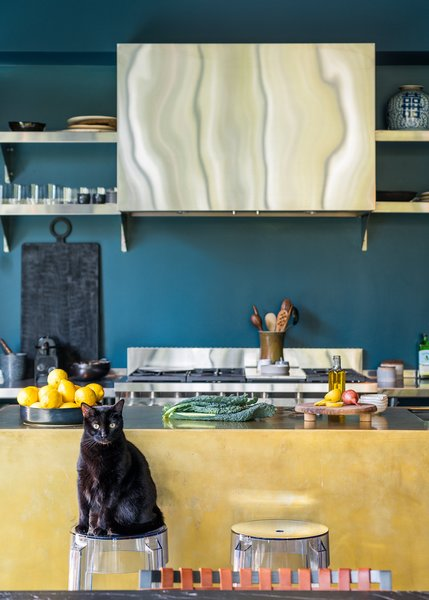 Tweak, another kitty, sits at the brass-clad kitchen island on a Ghost stool by Philippe Starck.