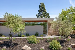 Outdoor, Shrubs, Front Yard, Vertical Fences, Wall, Trees, Wood Fences, Wall, and Walkways Set on a spacious lot in the Terra Linda area of San Rafael, California, this Eichler is elongated by a span of clerestory windows and masonry blocks along the front facade.