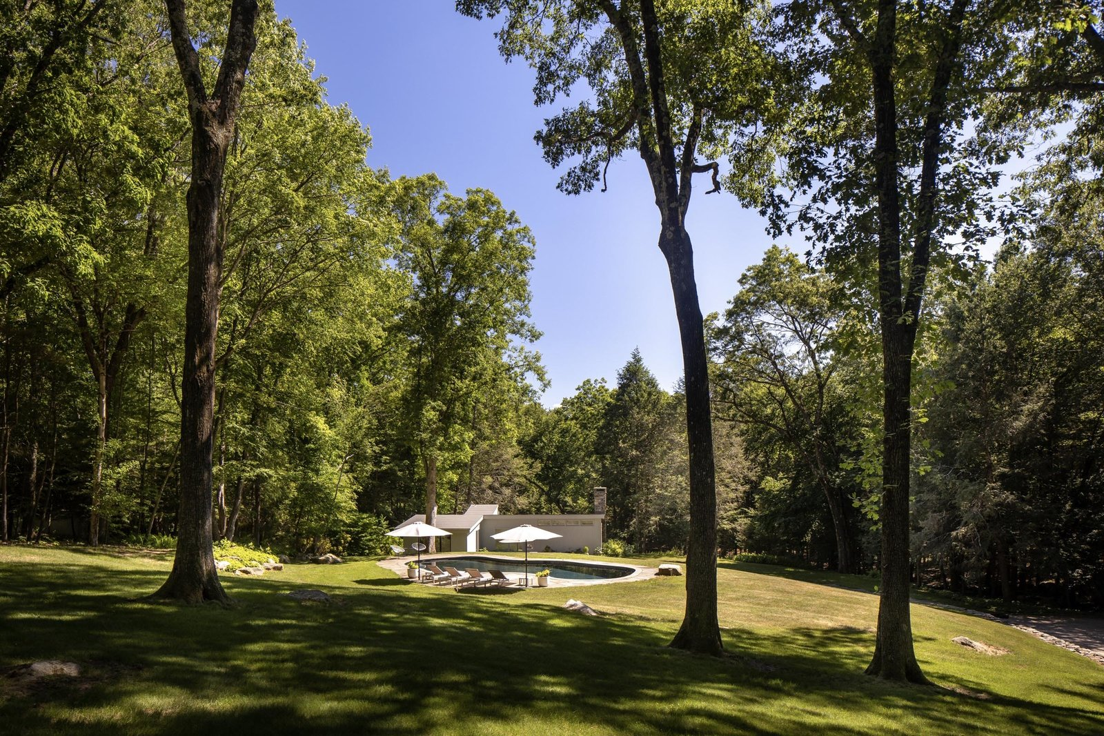 A view further back shows the gently sloping hill and long driveway to the right. The property's 24.75 acres offer a private retreat with access to many regional hubs.  Photo 15 of 15 in For $1.35M, Snag This Renovated Midcentury Retreat Nestled in a Hardwood Forest