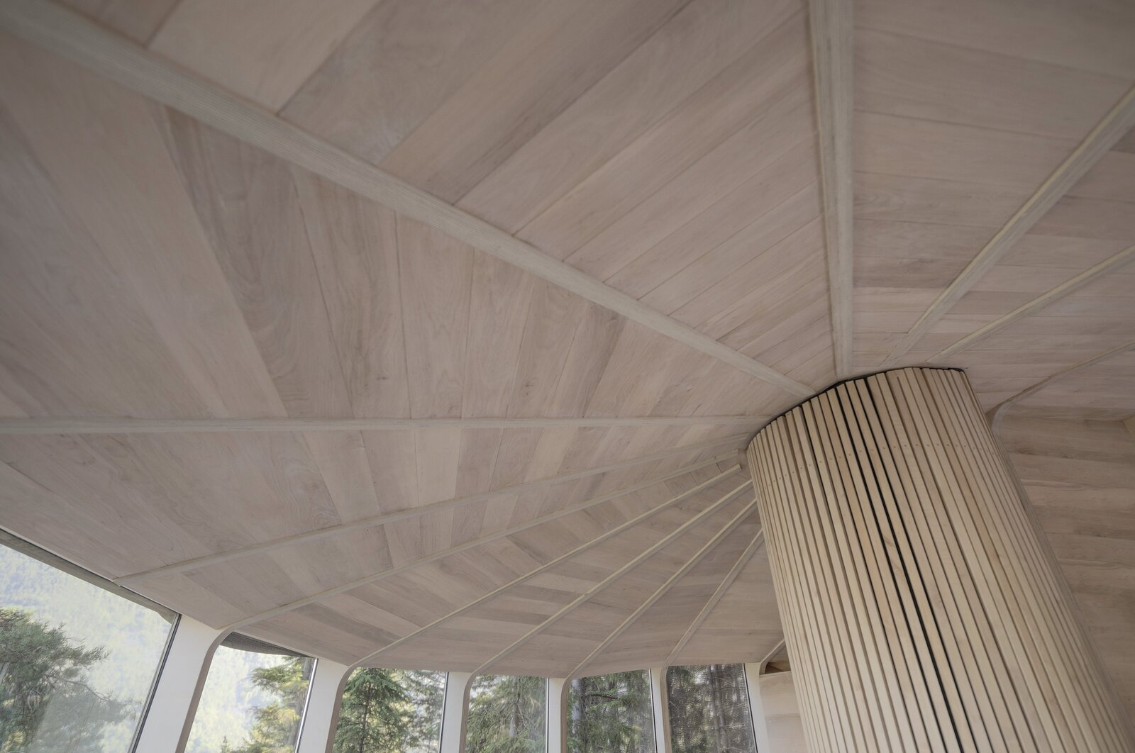 Woodnest tree house ceiling